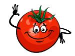Obst und Gemuese anbauen!