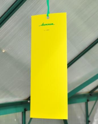 Aeroxon Insekten-Leimtafel (10 cm x 25 cm)