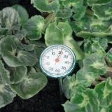 Erdboden Thermometer H 72