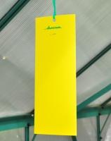 Aeroxon Insect Glue Trap (10 cm x 25 cm)